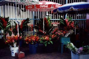 Papeete, Tahiti Market View 1